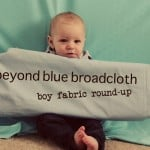 CELEBRATE THE BOY! [boy fabric round-up]