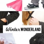 Winter Wonderland Collection Pre-Release Giveaway!