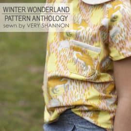 winter wonderland by pattern anthology