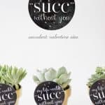 my life would SUCK without you (succulent valentine idea)