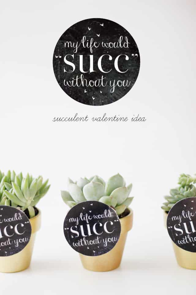 MY LIFE WOULD SUCK WITHOUT YOU - succulent valentine idea with free printable seekatesew.com