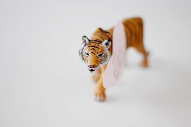 tiger valentines