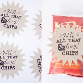 """All that and a bag of chips"" Valentine's Day Printable"