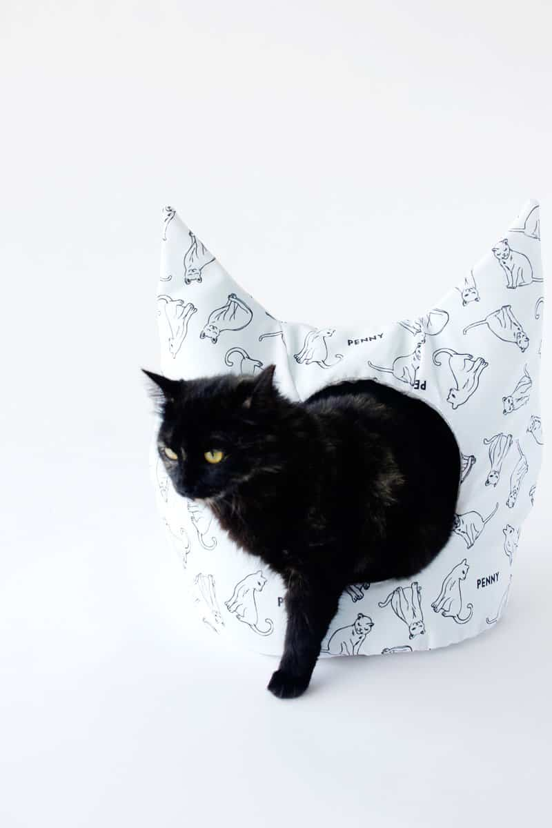Free Cat Bed Sewing Pattern See Kate Sew