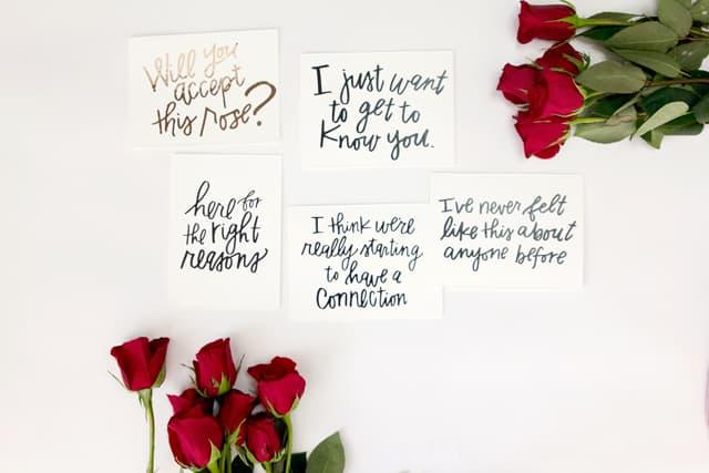 Bachelorette Inspired Valentines