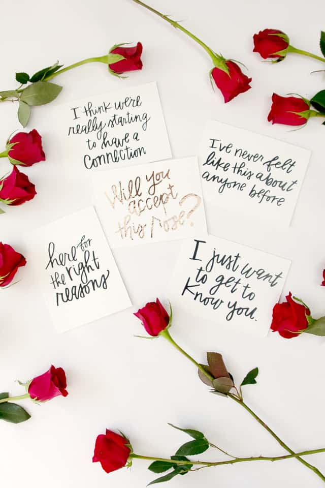 Bachelorette Inspired Valentines | Bachelor Themed Valentines | fun Valentine's Day ideas | will you accept this rose | easy Valentine ideas | easy Valentine crafts | DIY Valentines || See Kate Sew #thebachelor #DIYvalentines #valentinesday