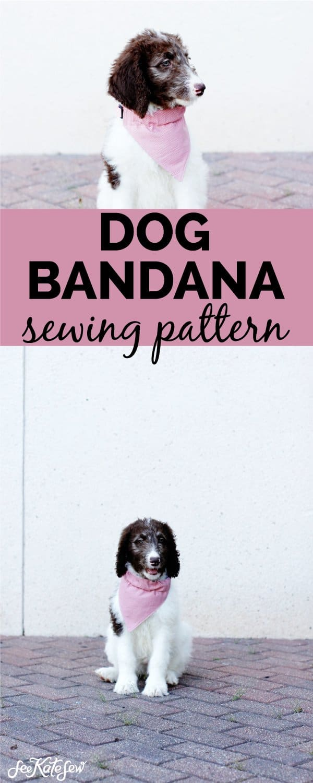 Sew a fabric bandana for dog