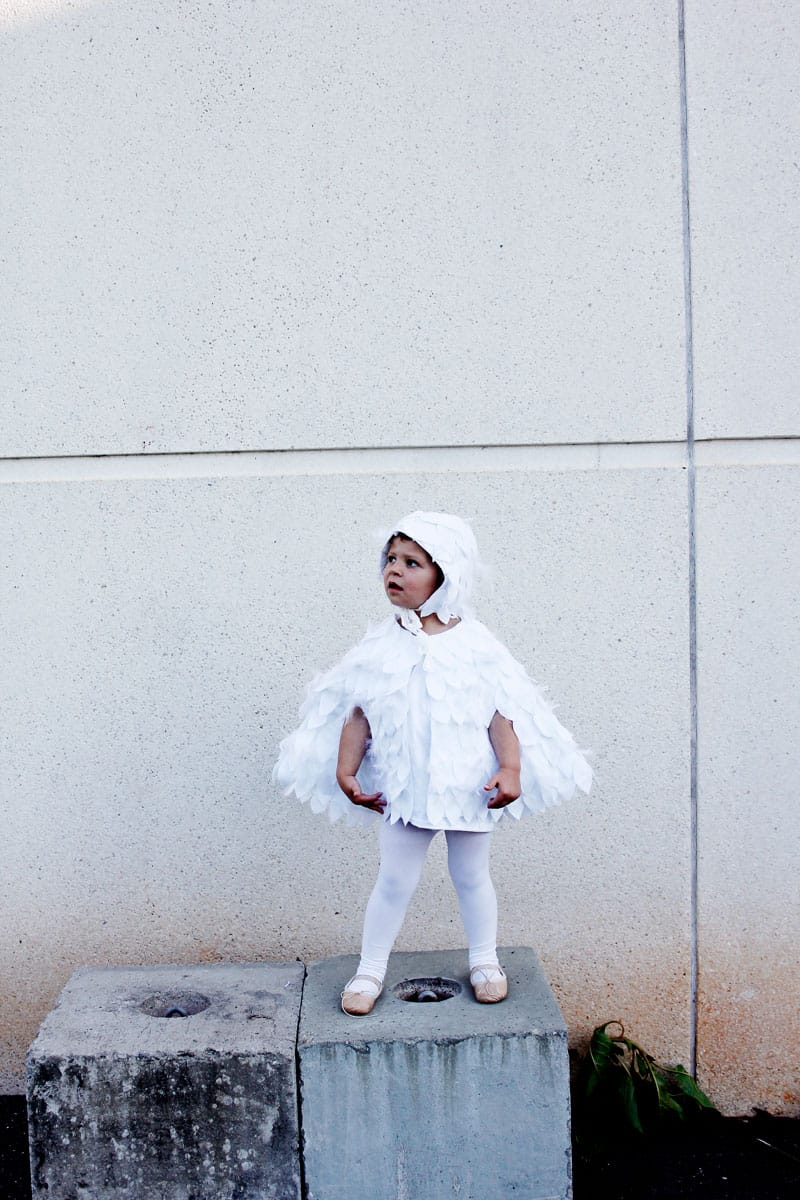 Hedwig Costume   Halloween Sewing