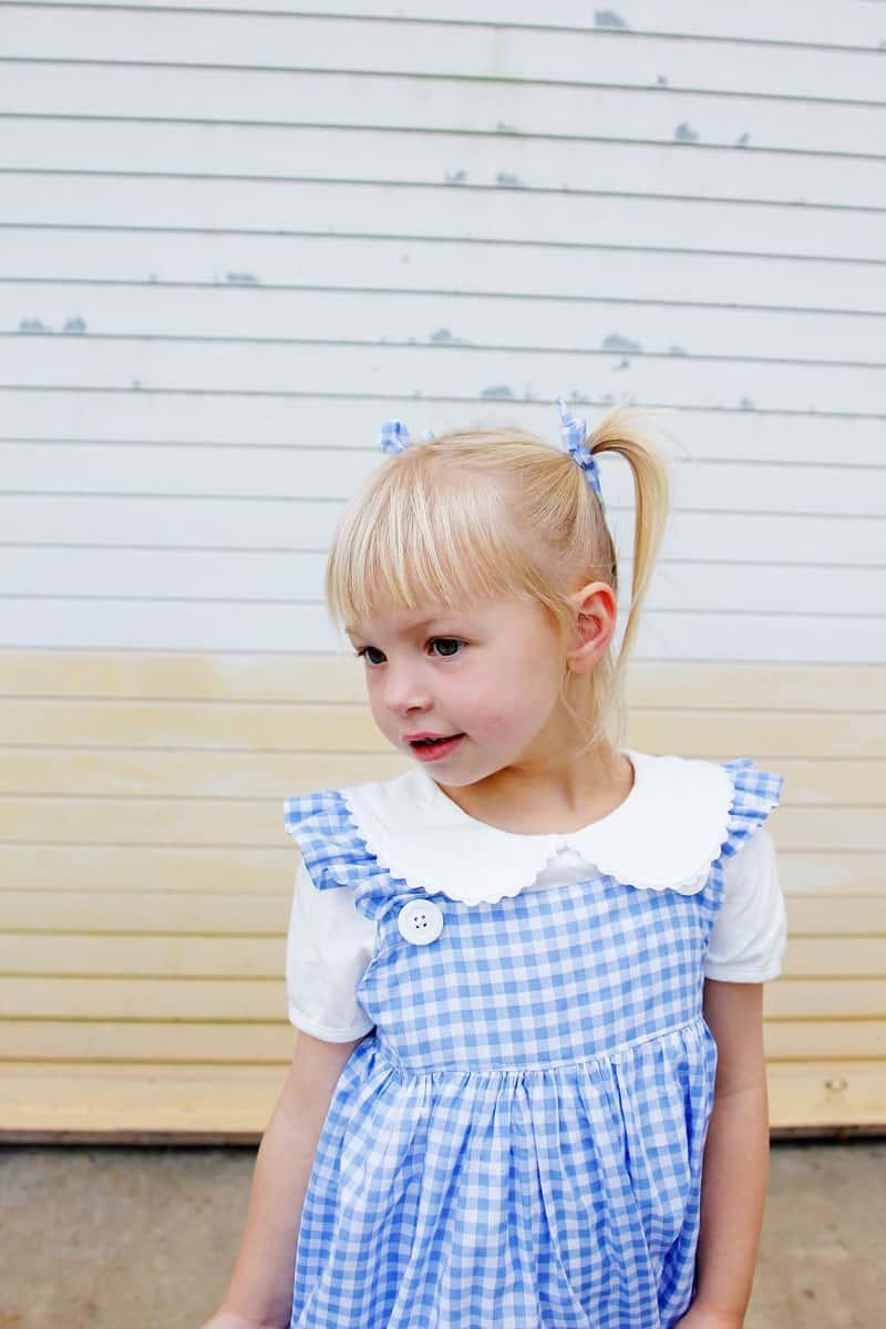 Easy Dorothy Costume